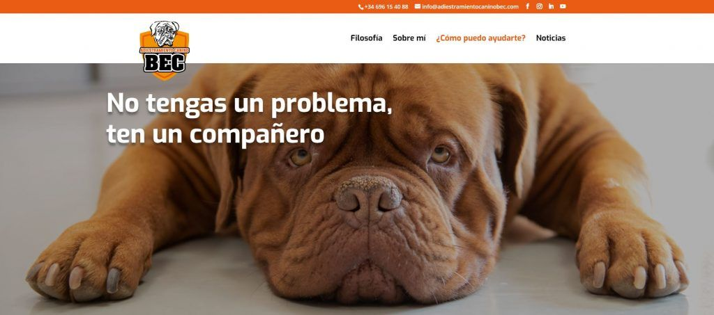 Pagina-web-Adiestramiento-canino-BEC_Filosofia_home