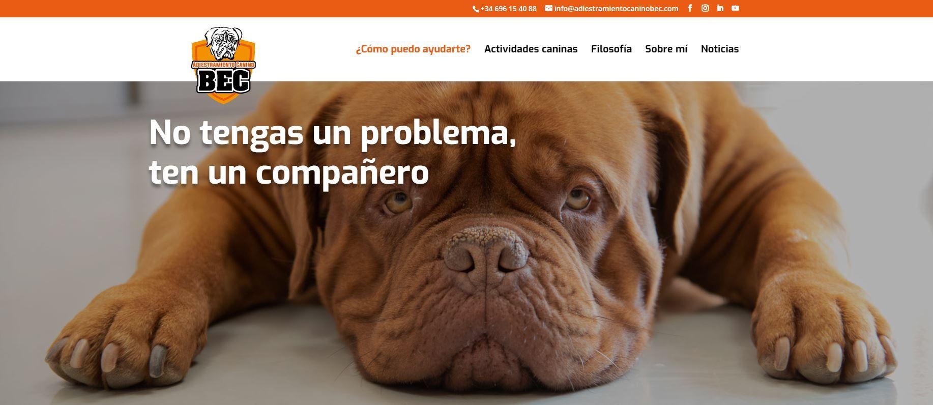 Pagina-web-Adiestramiento-canino-BEC_Filosofia