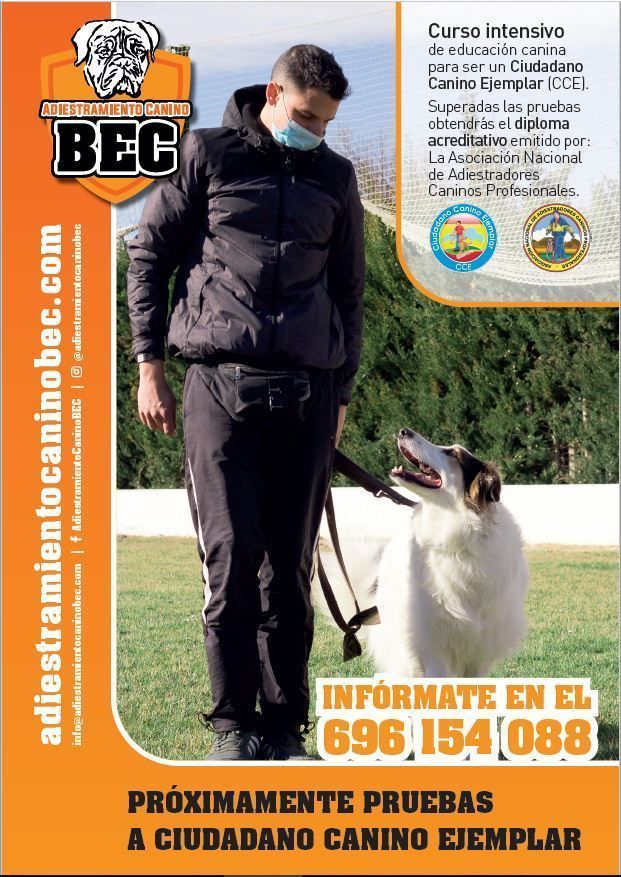 Cartel-Ciudadano-Canino-Ejemplar-BEC