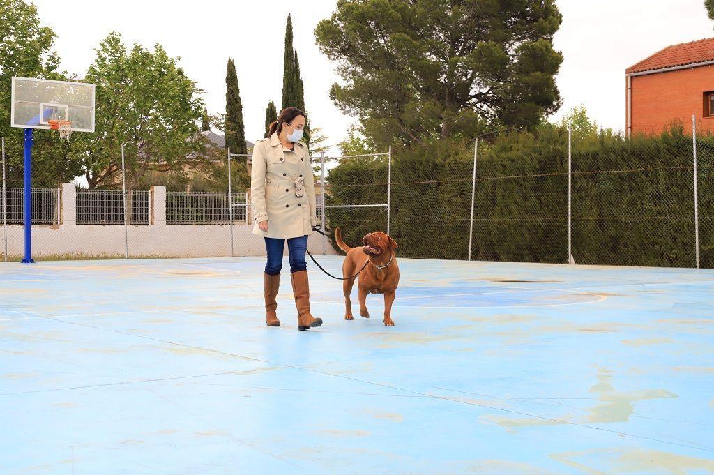 Ejercicio-N4-Ciudadano-Canino-Ejemplar_Adiestramiento-canino-BEC