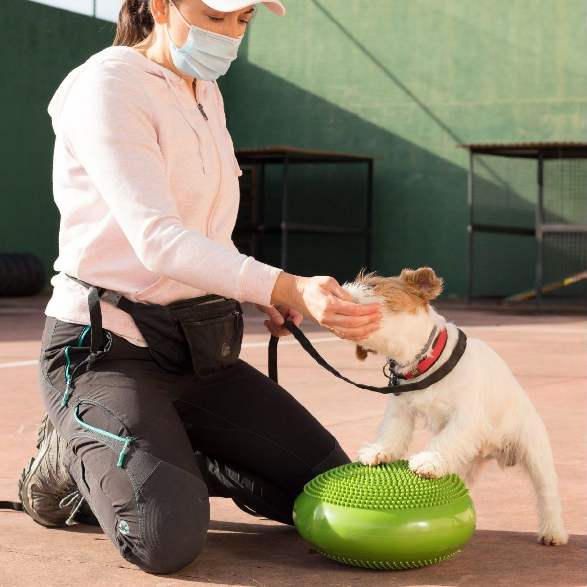Adiestramiento canino_BEC_Propiocepcion (2)