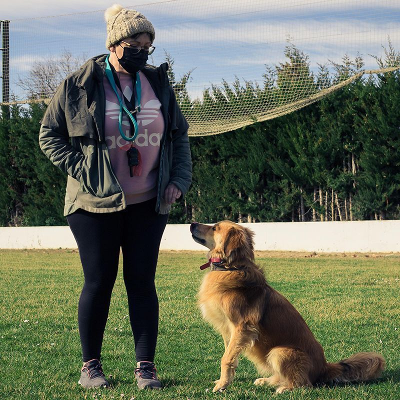 adiestramiento_canino_BEC_obediencia_basica (20)