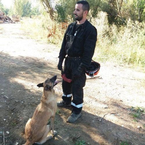 Adiestramiento_canino_BEC_Busqueda (18)-min
